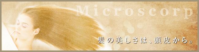 マイクロスコープ 髪の美しさは、頭皮から