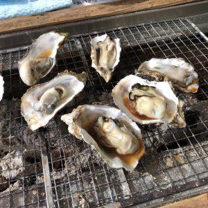 牡蠣 魚市魚座2